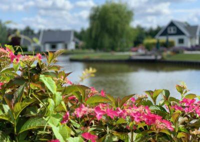 Park.bloemen